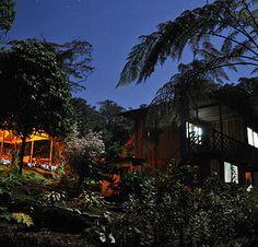 Cabañas con Zonas de hamacas en la selva de Ecuador.