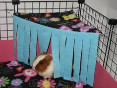Guinea pig hide-away might be good for my bun, too