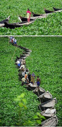 Floating Boat Bridge in Bangladesh