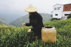 7 THINGS TO DO IN TAIWAN
