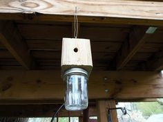 Build a Carpenter Bee Trap . NBNB I'd never heard of these destructive carpenter bees that bore huge holes in your wood! I always though all bees were good, but obviously not these carpenter bees. Wood Bee Trap, Boring Bees, Bee Catcher, Wasp Catcher, Wood Bees, Carpenter Bee Trap, Bee Traps, Termite Control, Pest Control