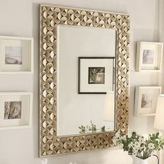 Borghese Champagne Finish Rectangular Accent Wall Mirror