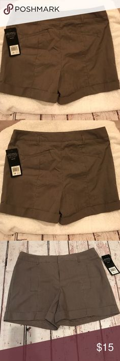 Brown shorts,  ladies size 10,  Daisy Fuentes Size 10 Daisy Fuentes Shorts