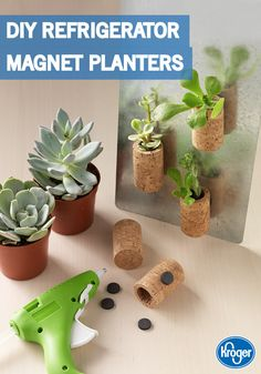 Why toss wine corks when you could transform them into DIY Refrigerator Magnet Planters. See the craft tutorial from Inspired Gathering to make succulent decorations this spring.