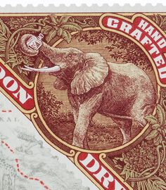 Elephant Gin packaging design