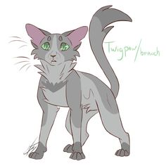 Warriors Design Compilation I Here's the second half of the characters requested. Hope you guys like it, and who requested them too. Warrior Cats Quiz, Warrior Cat Memes, Warrior Cats Series, Elf Warrior, Warrior Drawing, Warrior Cat Drawings, Warrior Cats Fan Art, Warrior Cats Art, Warriors Erin Hunter