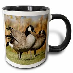 East Urban Home Canadian Geese, Birds, Elk Refuge, Wyoming Rolf Nussbaumer Coffee Mug Espresso Cups Set, Cappuccino Cups, Coffee Mug Sets, Mugs Set, Canadian Gifts, Cupping Set, Cup And Saucer Set, Wyoming, Birds