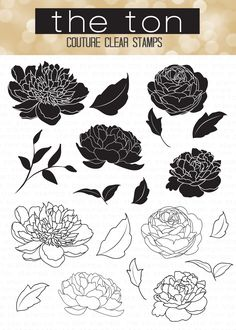 Our Wild Peonies come with 2 pairs of each peony bloom and leaves (solid and outline form). - 4x6 inches - 19 stamps - Made of photopolymer - Made in the U.S. - Coordinating dies can be found here.