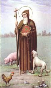 This coming Saturday, January is the feast of St. Anthony the Abbot, also known as St. Anthony of Egypt, St. Anthony the Great, and . Catholic Art, Catholic Saints, Patron Saints, Roman Catholic, Anthony The Great, Oracion A San Antonio, San Antonio Abad, Anglican Church, Guardian Angels