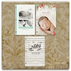 Holiday 2012 Gifts Inspiration Board, curated by Denise at Minted