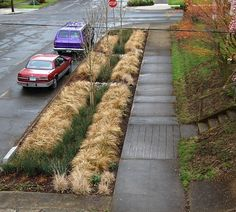 """> Portland Green Streets < """"Green Streets has become a community affair in Portland, Ore., where citizens can """"adopt"""" a Green Street stormwater management facility in their neighborhood. The city sponsors Green Street maintenance training, which includes picking up trash, removing leaves and debris, and occasional weeding and watering."""""""