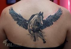 Get a Pegasus tattoo.  But, on my lower back....and not this big!