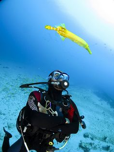 Diving is very popular in Sal and Boa Vista #CapeVerde #TeamCapeVerdean #TeamFunana