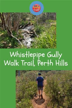 Do you love a challenging hike with your kids? On the Perth Hills escarpment you'll find the beautiful Whistlepipe Gully trail. This gravel track winds down the hill along a stream, through bushland, with stunning views of the city below. #perth #perthhills
