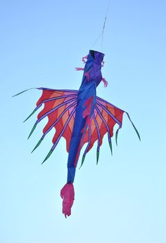 Nice creation, but no, it's not a kite. More like a winged windsock. See how it's bridled from the nose, which probably has a circular opening... T.P. (my-best-kite.com)