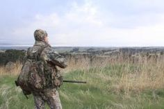 Try these five tips when spring turkeys play tough. Turkey Calling, Best Turkey, Hunting Tips, Turkey Hunting, Good Things, Play, Spring, Gun Safes, Fishing