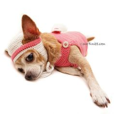 Cute Dog Clothes Bunny Costume with pom pom butt. Amigurumi Bunny Dog Clothes with matching Hat. Any Custom Dog Costume are welcome. Made of 100% cotton yarn. #chihuahua #designerdogclothes #myknitt #diydogclothes #chihuahuaclothes