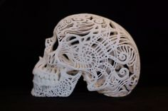 Skull Sculpture Crania Anatomica Filigre