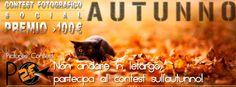 #Autunno #autumn #free #contest #foto #photo #premio #award #winner #photographer #fotografia #fotografo #photography #pc #picontest