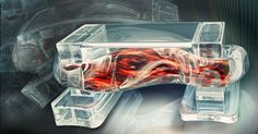 """Researchers are developing """"bio-bots"""" -- machines that combine synthetic 3d-printed frameworks with biological muscle tissue."""