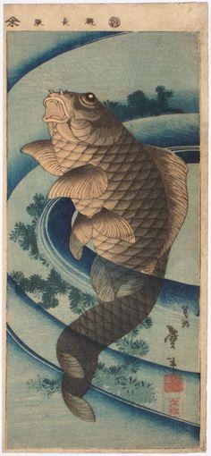 Katsushika TAITO II: - Richard Kruml