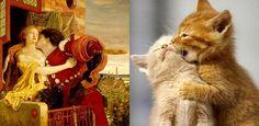 loveable kittens