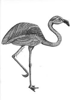 Flamingo Illustration von loretta cosima Flamingo Illustration, Bird, Nice Asses, Birds