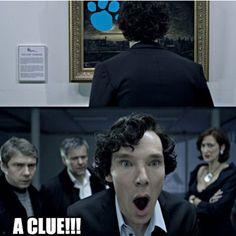 Sherlock found a clue! @allyson stanley