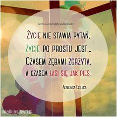 Życie nie stawia pytań, życie po prostu jest... #Osiecka-Agnieszka,  #Życie More Words, Motto, Thoughts, Humor, Motivation, Love, Quotes, Inspiration, Amor