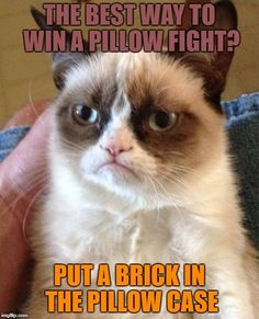 Grumpy Cat | THE BEST WAY TO WIN A PILLOW FIGHT? PUT A BRICK IN THE PILLOW CASE | image tagged in memes,grumpy cat | made w/ Imgflip meme maker
