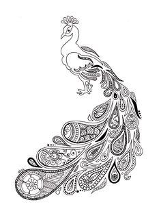 Dessin au feutre noir d'un paon avec un plumage paisley. Dessin en noir et blanc par Alice Gerfault. Découvrez ce dessin et bien d'autres !