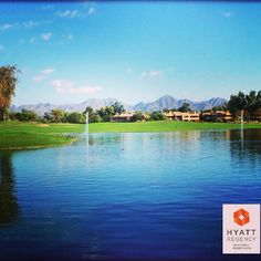 Good afternoon from #Scottsdale!