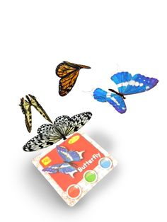 ARC: Bugs Augmented Reality interactive learning cards from Amagicland, 3D animations, sound & music. www.amagicland.com