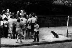 **SIGNED** - Erwitt - USA. New York, Albany. 1962.