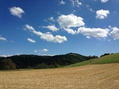 d'Egliseneuve-pres-Billom, Auvergne, Puy de dôme, France.