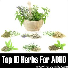 Top 10 Herbs For ADHD