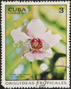 Postal stamp CUBA