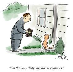 Funny Cat Cartoon