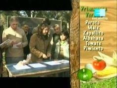 Curso de huerta Orgánica - 3 (La siembra 1ra parte) 1 - YouTube Compost, Baseball Cards, Youtube, Ideas, Gardens, Harvest, Pest Control, Vertical Vegetable Gardens, Tomatoes
