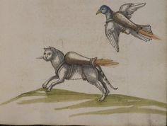 Novel military applications of cats and birds from the 16th century. More at the source.