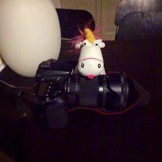 fluffy #unicorn is watching you! | Fristensio è tra noi! @selarys @olimpianigriscosattini