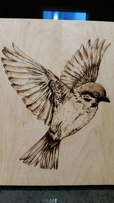 Wood burning Pyrography bird in flight