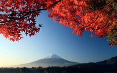Mount Fuji  ~ photographer unknown