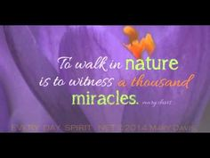 Walk in #nature and see 1000 #miracles!  #90InspirationalSeconds wwww.meditationsimple