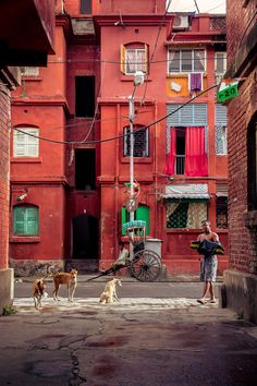 Kolkata: a walking and culture tour of India's city of joy | Travel | The…