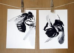 Honey Bee : 2 Archival Prints of Charcoal Drawings - Nature Wall Art 5x7 - Featured in West Elm