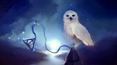The Deathly Hallows - hedwig, movie, dark, magic, deadly hallows, harry potter, hogwarts, fantasy, owl