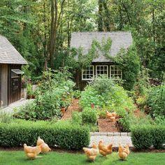Fairytale Garden, Dream Garden, Garden Care, Garden Tips, Farm Gardens, Outdoor Gardens, Vegetable Garden Design, Vegetable Gardening, Organic Gardening