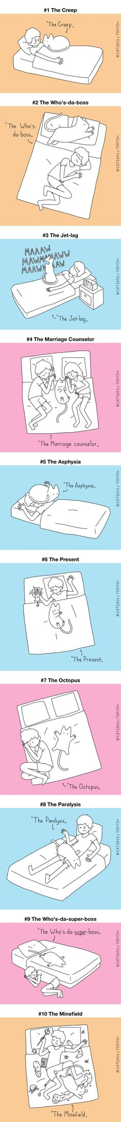 Top 10 Positions To Sleep With Your Human