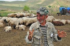 Armenia - Yezidi sheep farmers in the mountains of Urtsasar, June 22, 2012. Photo by Karen Minasyan (RFE/RL)